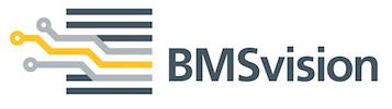 BMSvision logo – Color PMSc